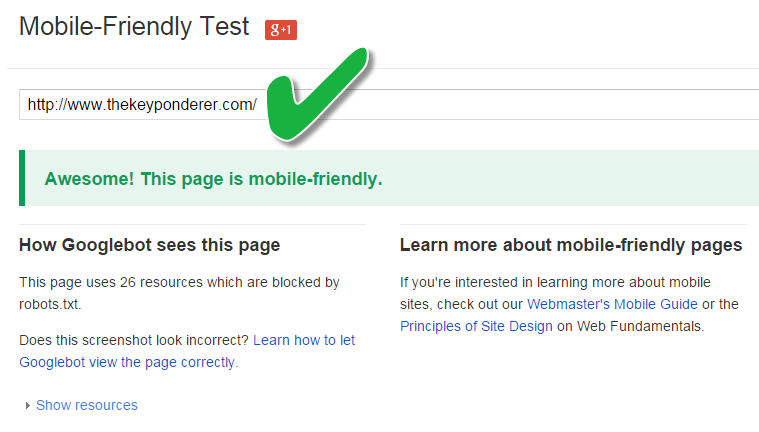 mobile friendly test passed